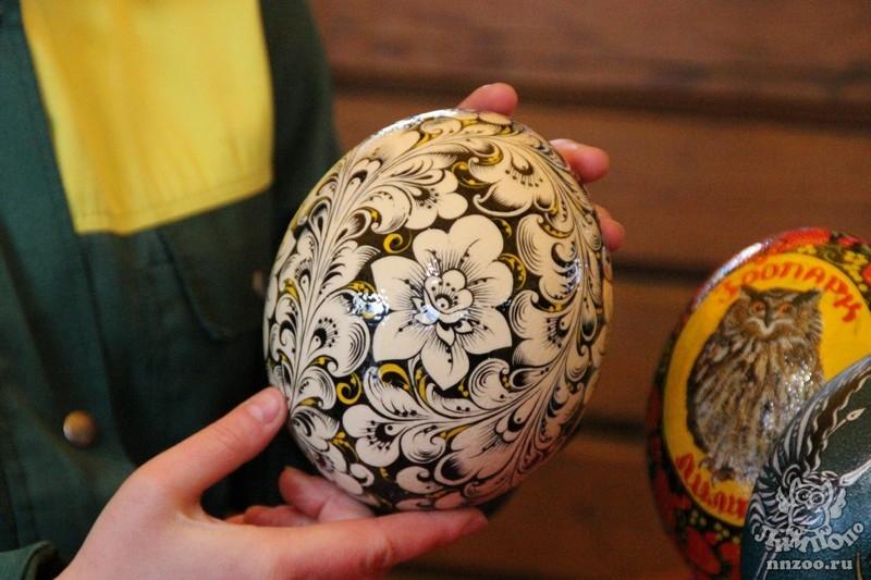 Поделки из яйца страусиного яйца